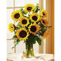 Sunny Sunflowers for any occasion!